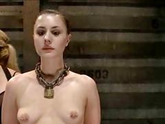 Katharine Cane teaser 8