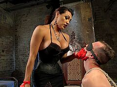 Dominant shemale treats her slave with rough BDSM sex and oral