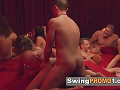 Swinger youthful couples commence the hottest sexual venture on TV